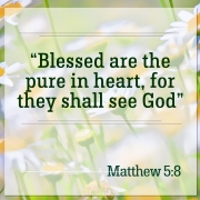 Blessed are the pure in heart, for they shall see God. Matthew 5:8