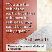 The salt of the world