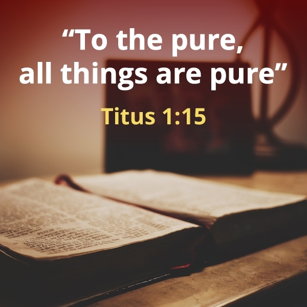 The Charity as infuse virtue: everything is pure for the pure