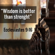 Wisdom is better than strenght