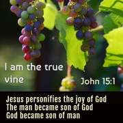 I am the true vine. John 15:1