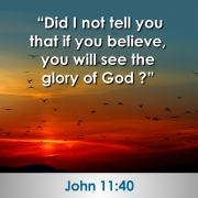 Did I not tell you that if you believe, you will see the glory of God?